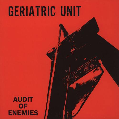 Geriatric Unit - Audit Of Enemies LP