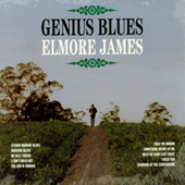 Elmore James - Genius Blues